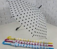 땡땡이 반투명 우산